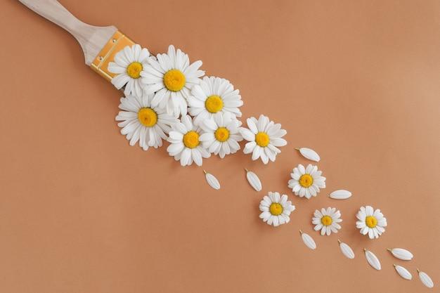Pincel de flor de camomila em fundo bege - conceito de tinta não tóxica.