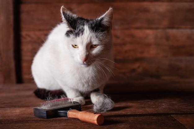 Pincel para animais retalhos de lã