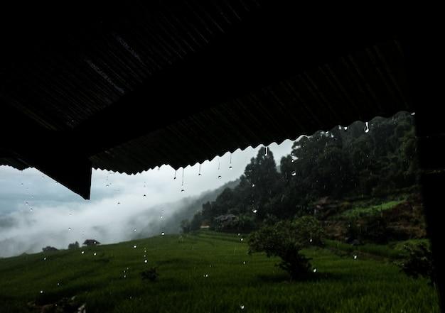 Pingo de chuva caindo do telhado no campo de arroz