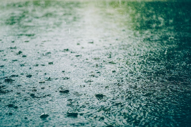 Pingo de chuva no chão