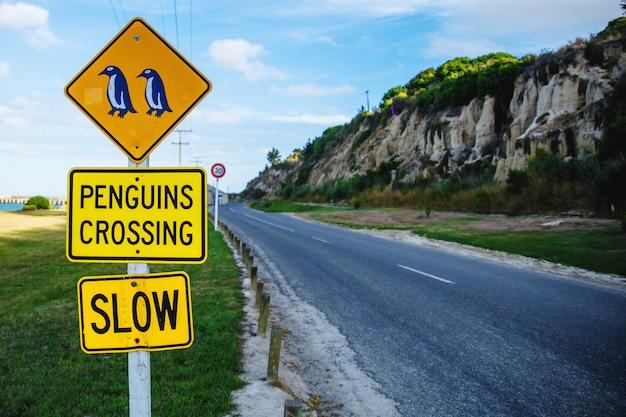 Pinguins cruzando sinal perto da colônia de pinguins azuis em oamaru, nova zelândia