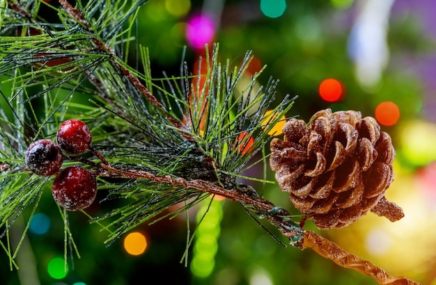 Pinha na árvore de natal