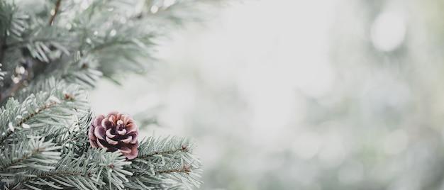 Pinheiro natural coberto de neve