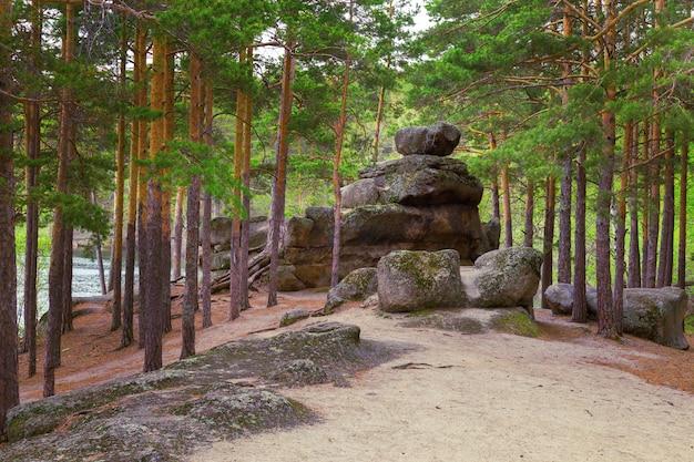 Pinheiros altos e montes fantásticos de rochas nas margens do lago auliekol