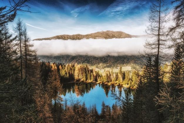 Pinheiros ao lado do corpo de água perto da montanha sob nuvens brancas
