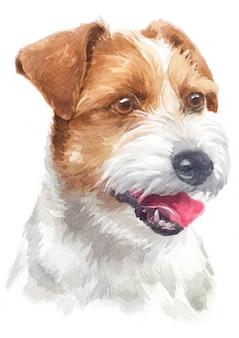 Pintura a cores de água de parson jake russell terrier