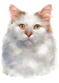 Pintura a cores de água de turco van cat