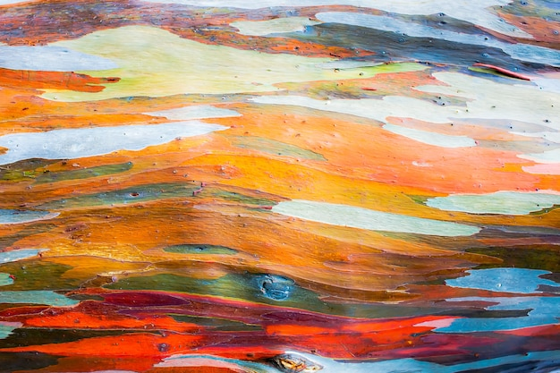 Pintura abstrata por casca de árvore de eucalipto