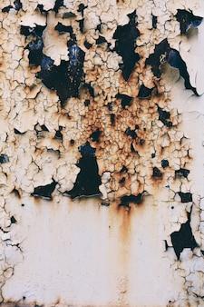 Pintura clara de rachamento em uma porta oxidada do metal do grunge.