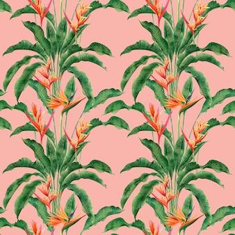 Pintura em aquarela ave do paraíso flores desabrochando colorido sem costura de fundo