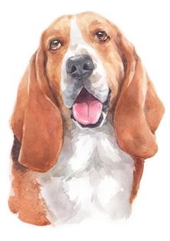 Pintura em aquarela de basset hound