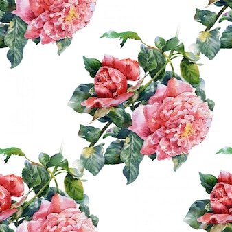 Pintura em aquarela de flores, rosa, sem costura padrão no fundo branco