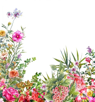 Pintura em aquarela de folhas e flores, em branco