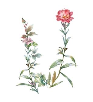 Pintura em aquarela de folhas e flores, sobre fundo branco