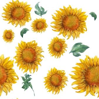 Pintura em aquarela de folhas e girassol