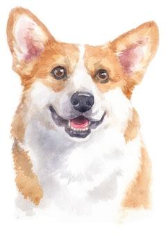 Pintura em aquarela de pembroke welsh corgi