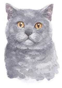 Pintura em aquarela de shorthair britânico