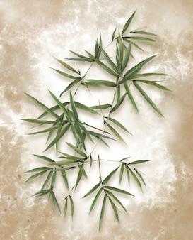 Pintura em aquarela ilustração de folhas de bambu