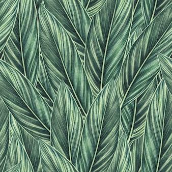 Pintura em aquarela tropical de folhas verdes sem costura de fundo.