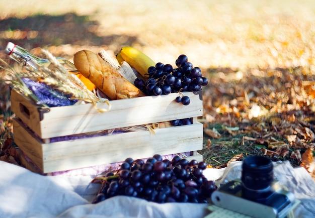 Piquenique de outono em caixa de madeira com frutas-uvas, bananas, laranjas e garrafa de água potável