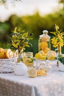 Piquenique de verão com limonada e macarrão