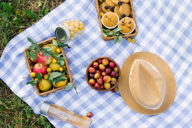Piquenique saudável para as férias de verão com bolos frescos, frutas e bagas, dispostas em um tecido xadrez branco-azul, cesta e chapéu