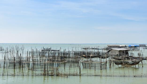 Piscicultura marinha na tailândia