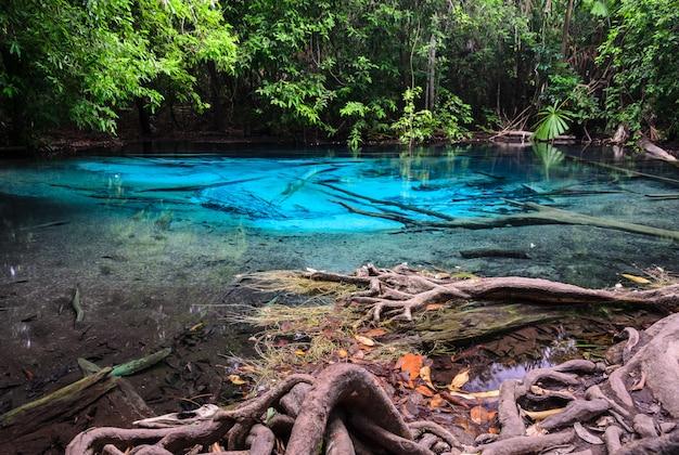 Piscina azul esmeralda (sra morakot) na província de krabi, tailândia