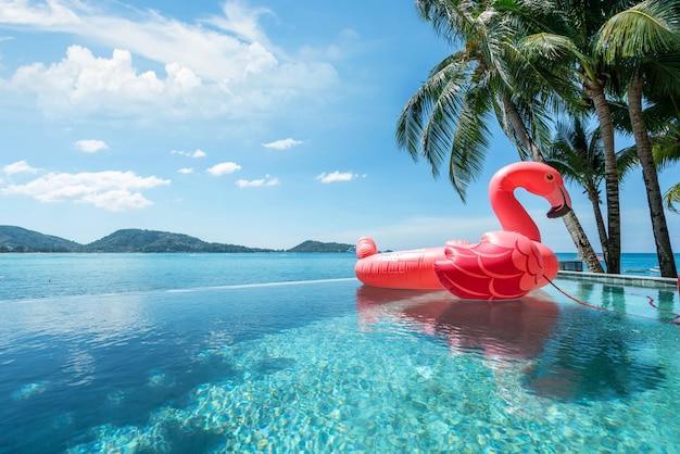 Piscina exterior, flutuando cisne com céu azul do oceano