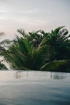 Piscina infinita em um resort