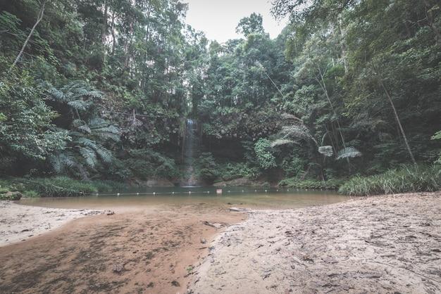 Piscina natural multicolorida escondida na floresta tropical do parque nacional lambir hills, bornéu, malásia.