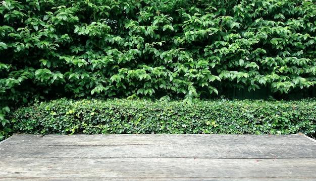 Piso de madeira contra o fundo da árvore