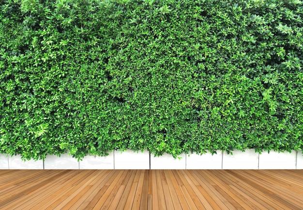 Piso de madeira e jardim vertical com contraste de folhas verdes tropicais
