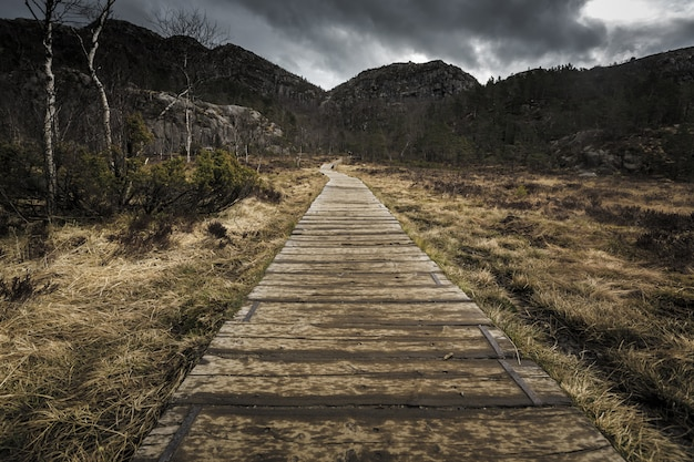Pista de caminhada e paisagem alpina