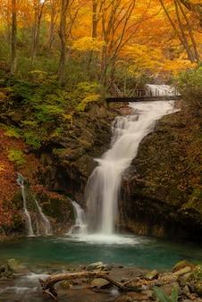 Pista de caminhada perto de um rio no outono