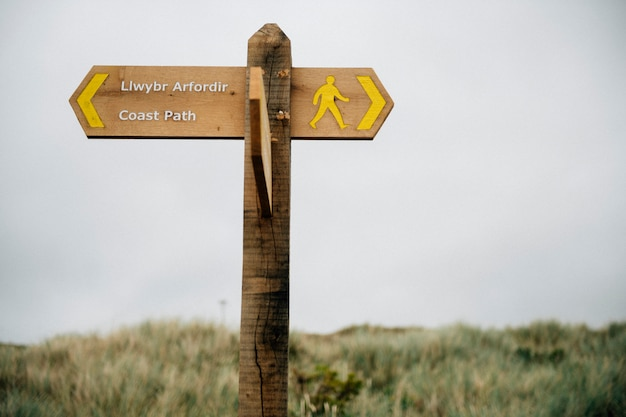 Placa de madeira direcional em uma colina