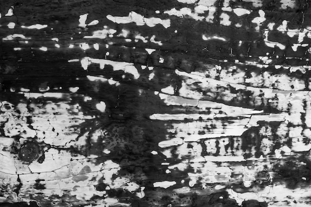 Placa de madeira fortemente carbonizada.