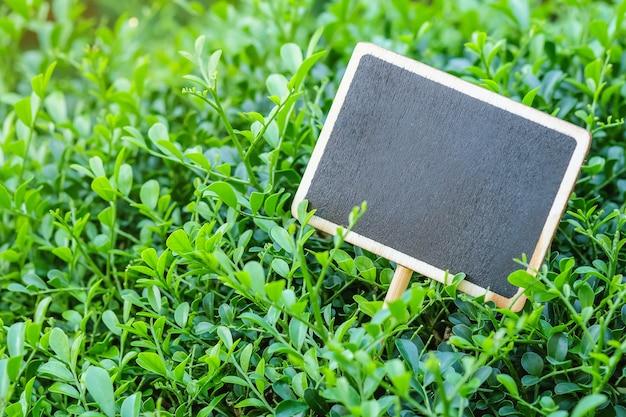 Placa de madeira preta closeup na planta verde texturizado fundo