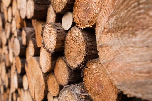 Placa de madeira rachada