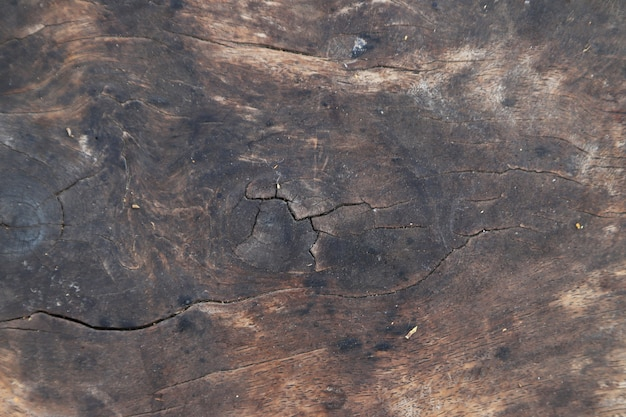 Placa de madeira vintage velha em fundo de textura de superfície de árvore velha