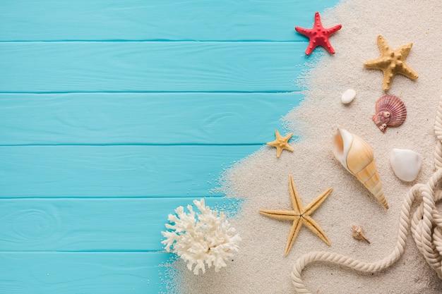 Plana leigos composição areia e conchas