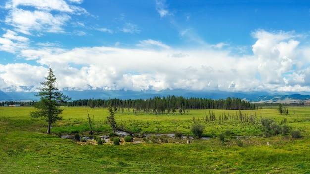 Planalto pantanoso verde contra o fundo de montanhas distantes