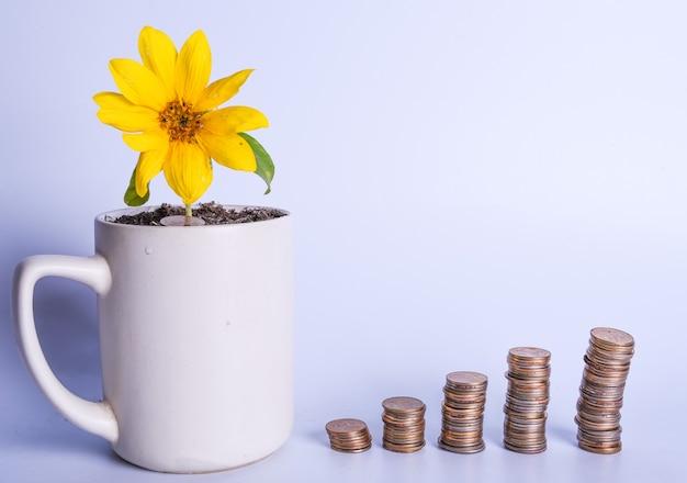 Planejamento financeiro, conceito de crescimento de dinheiro. flor amarela em uma xícara e pilhas de moedas em ordem crescente. copie o espaço