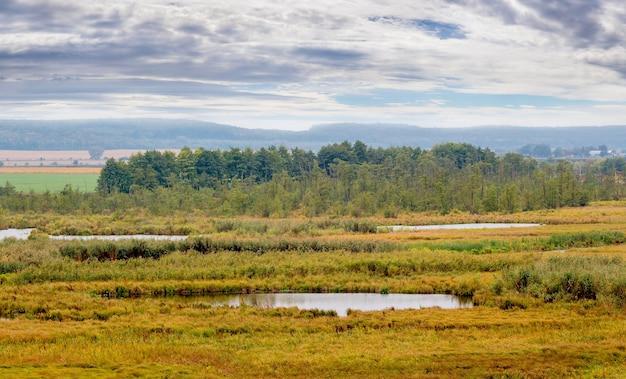 Planície com rio, árvores ao longe e céu pitoresco no outono