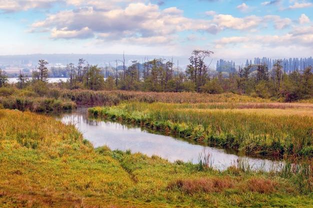 Planície com rio, árvores na costa e céu pitoresco
