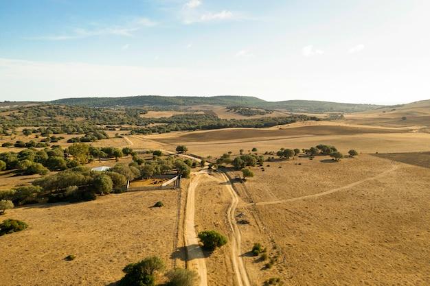 Planície e floresta com estrada tomada por drone
