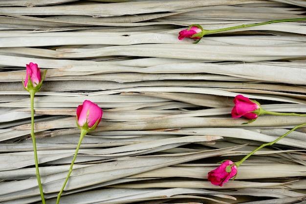 Plano criativo de rosas cor de rosa leigos em fundo de folhas de palmeira secas, fotografia orgânica.