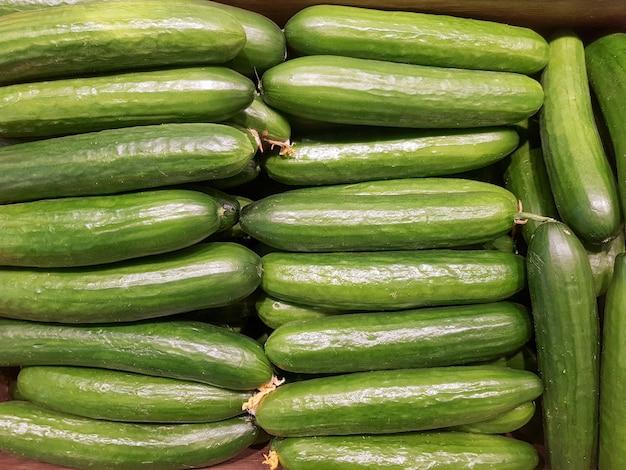 Plano de fundo de pepinos verdes longos em close-up textura de pepinos verdes