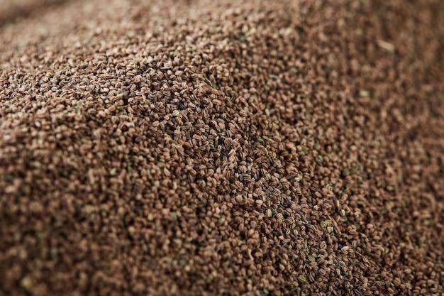 Plano de fundo de sementes de aipo orgânico seco saudável mostrando detalhes e textura