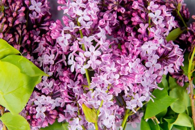 Plano de fundo de um buquê de belas flores lilás vista superior